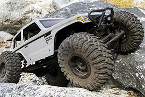 Axial Wraith Spawn 4WD 110 RTR5